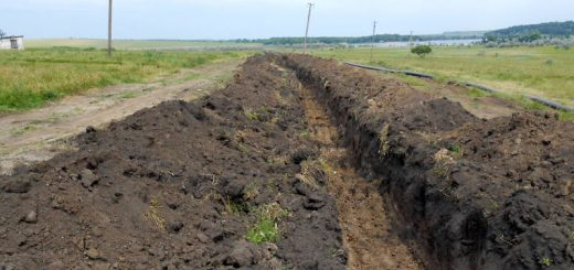 Расчет экологического ущерба почвы