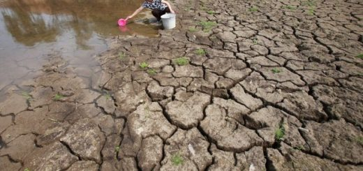Оценка экологического ущерба от выбросов в атмосферу: основное
