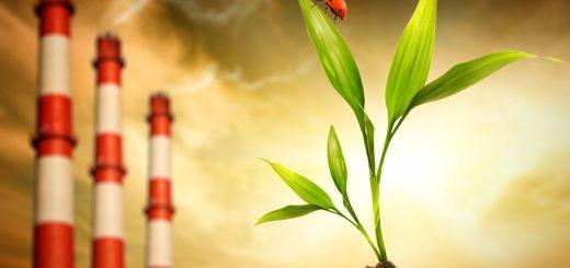 Оценить экологический вред