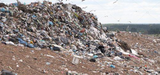Расчет вреда окружающей среде