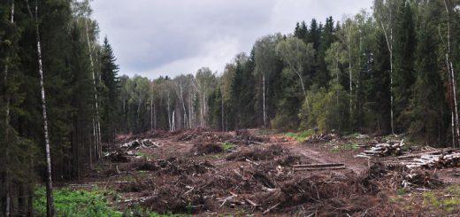 Расчет экологического ущерба при аварии