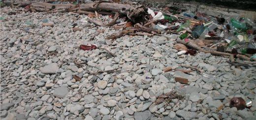 Экономическая оценка причиненного ущерба и вреда: общие данные