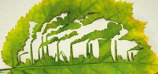 Оценка вреда водным биоресурсам по существу