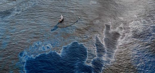 Расчет экологического ущерба при разливе нефти