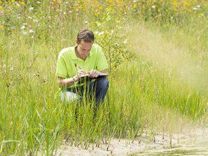 Комплексное экологическое исследование территории