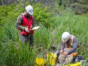 Комплексное экологическое обследование