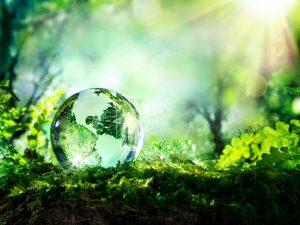Оценка экономического ущерба окружающей среды, вызванного физическими факторами