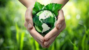 Оценка ущерба окружающей среде. Затраты