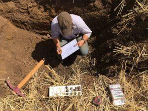 Почвенно-экологическое обследование