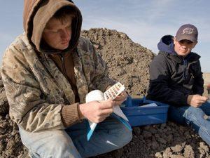 Санитарно-экологическое обследование грунтов