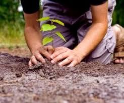 Задание на экологические изыскания
