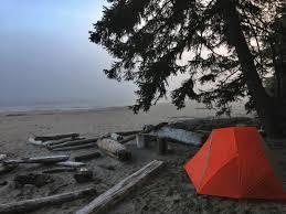 На палатку упало дерево