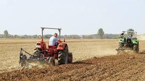 Агротехническая экспертиза