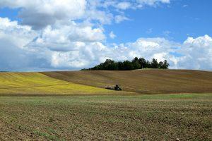 Агротехнический анализ