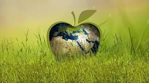Мониторинг природной среды