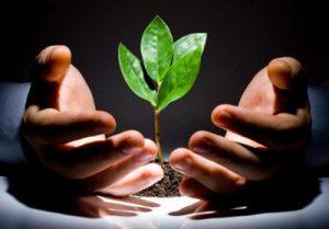 Экологический мониторинг природопользования