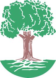 Экологический мониторинг и другие источники экологической информации