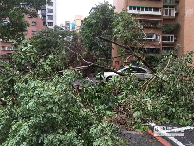 Осложнение погодных условий и причинение вреда городскому и личному имуществу