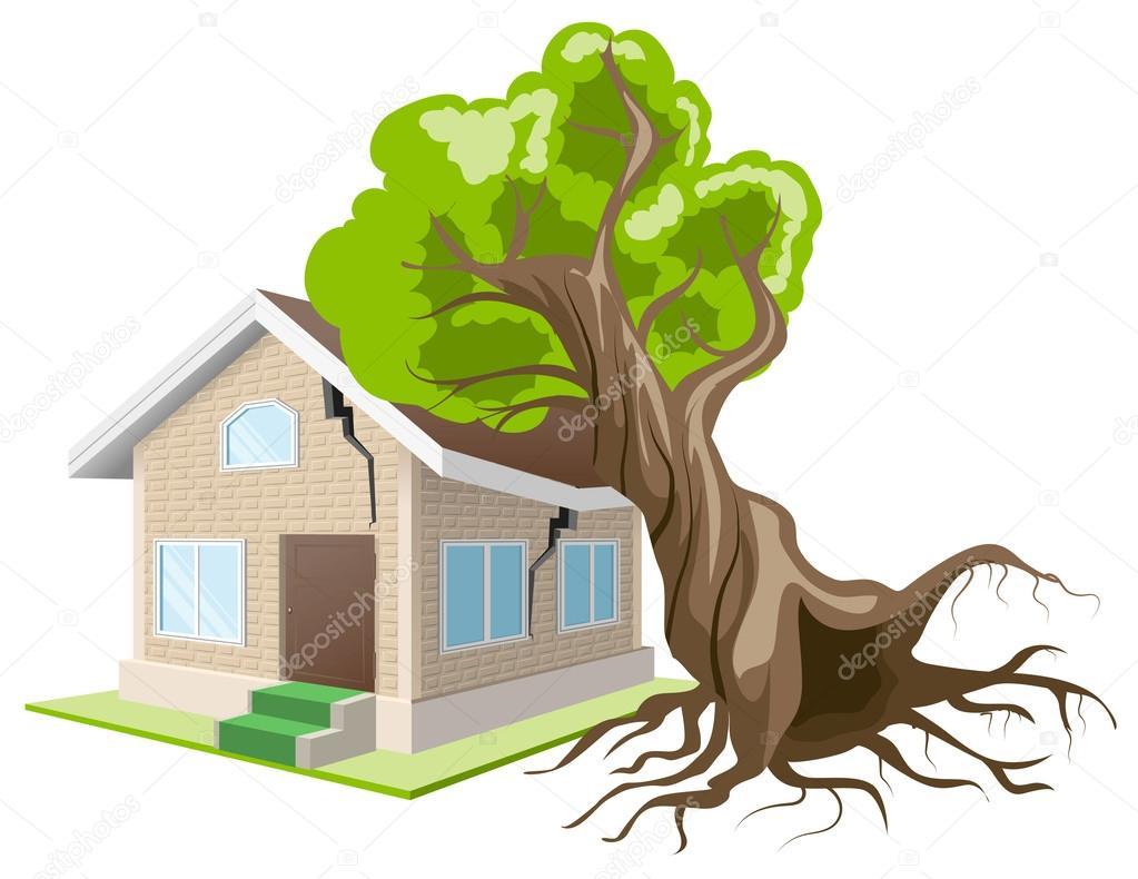 Куда звонить если упало дерево?