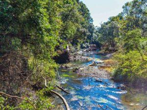 Экологическое исследование заповедных территорий