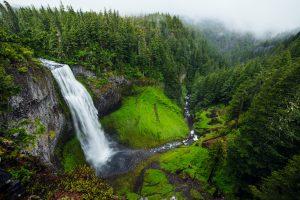Оценка экологического ущерба с экономической точки зрения
