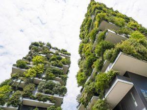 Экологическое исследование территории и строения