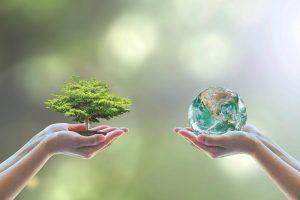 Как определить размер экологического вреда