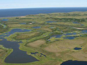 Экологическое обследование заповедных территорий