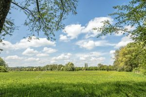 Оценка экономического ущерба от выбросов вредных веществ в атмосферу