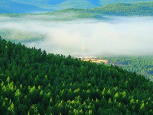 Экологическое обследование территории и строения