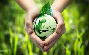 Расчет ущерба, наносимого окружающей среде