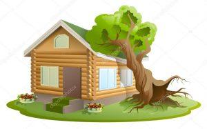 Упало дерево в Москве на дом, что делать?
