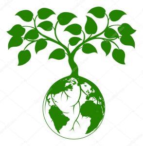Дендрологическая экспертиза дерева в Москве цена